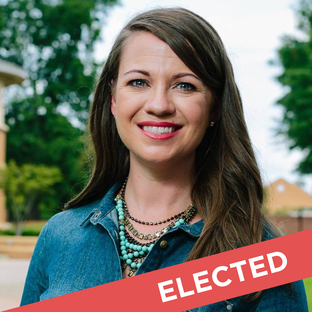 Teri Anulewicz  Elected for State House District 42   W  ebsite  |  Facebook