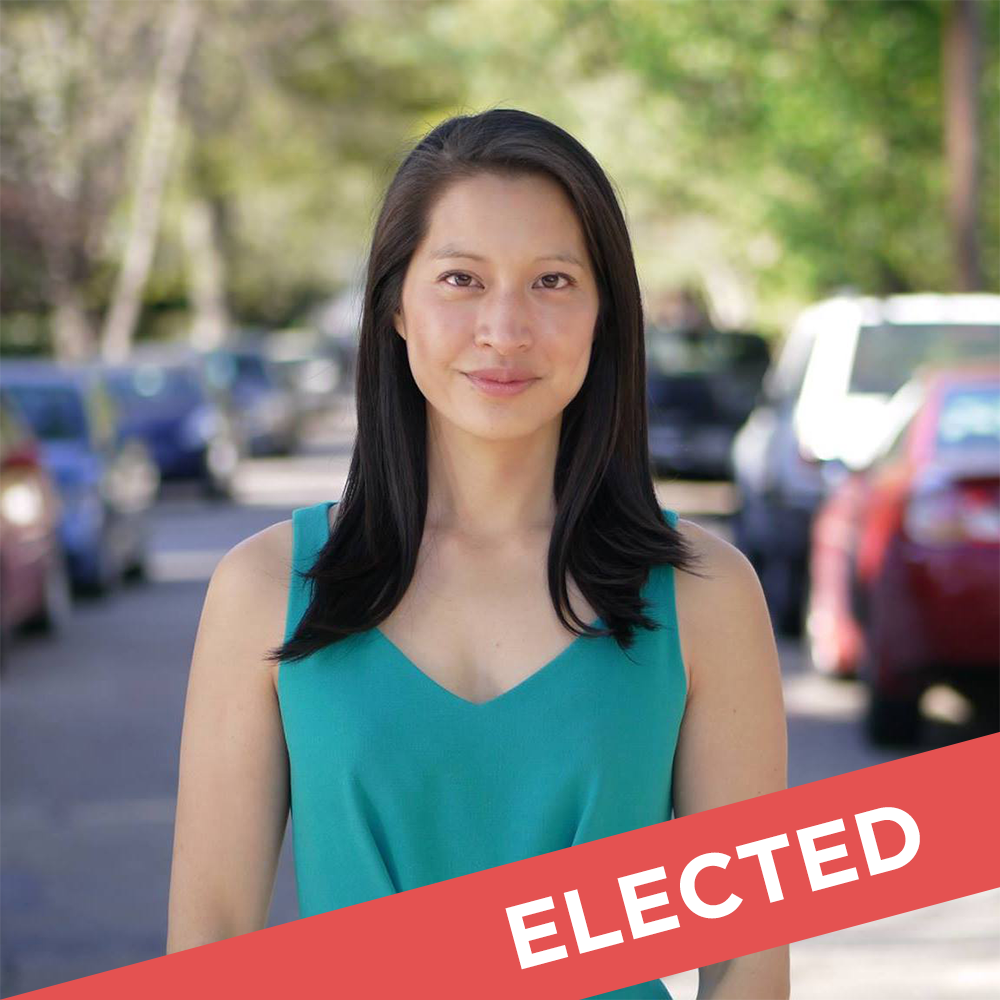 Bee Nguyen  Elected for State House District 89   Website  |  Facebook