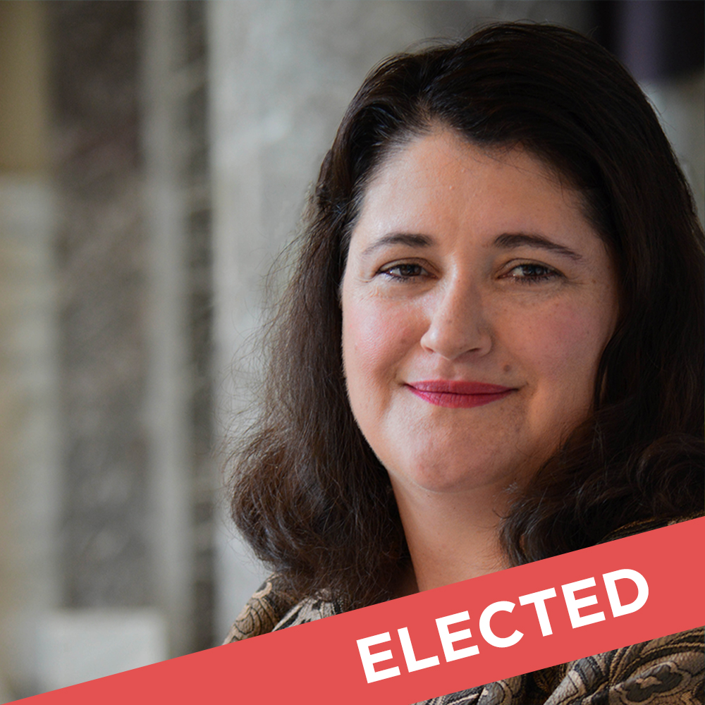 Zahra Karinshak  Elected for State Senate District 48   Website  |  Facebook  |  Donate