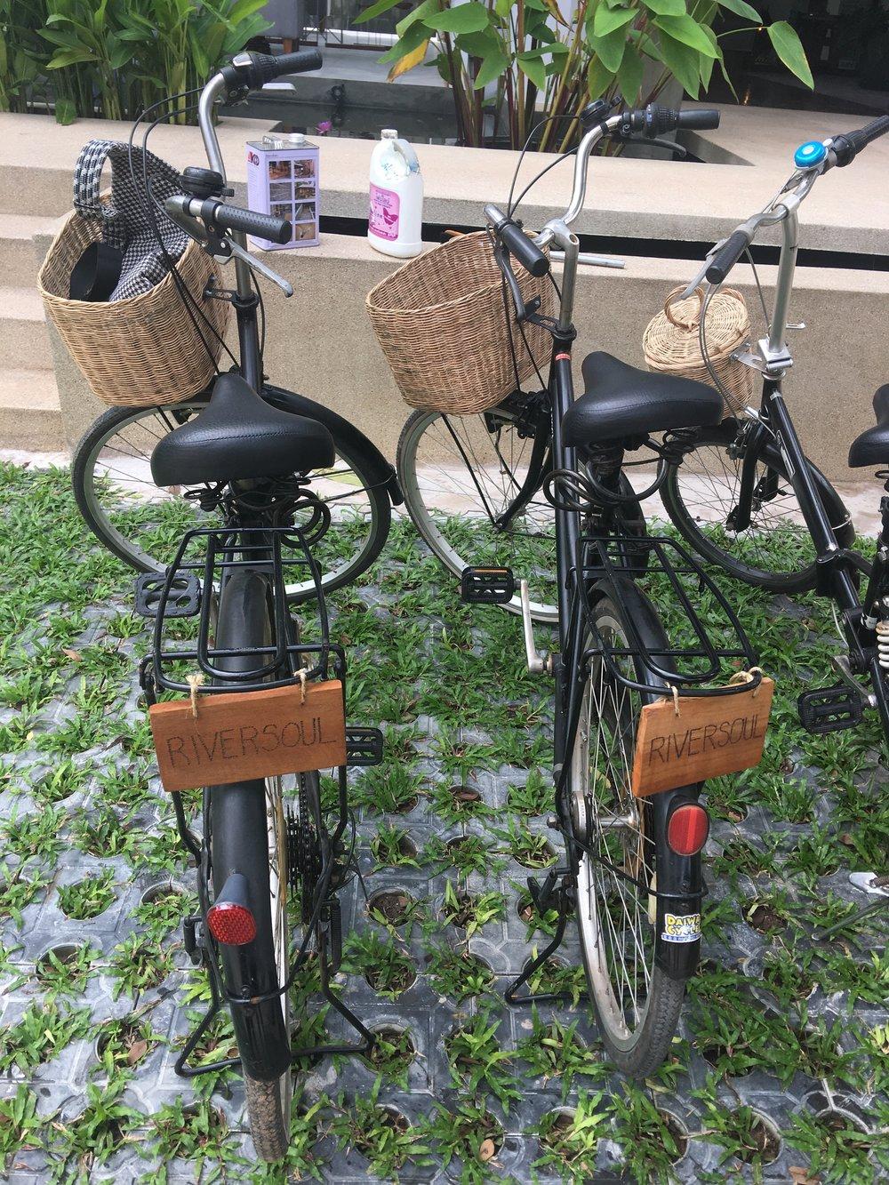 Our Bikes!