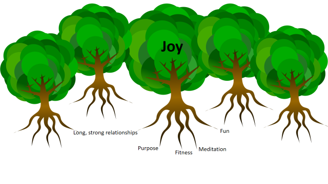 A community of joy; as trees are more resilient in a forest, so joyful people are more resilient in joyful communities.