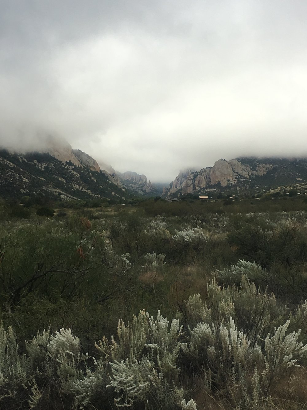 iPhone image of the entrance to Cave Creek Canyon in the cloudy gloom