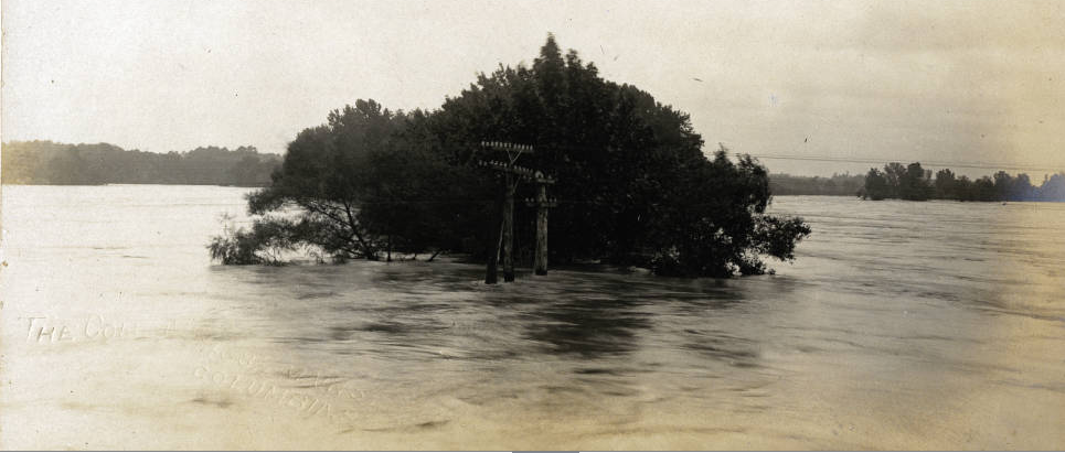 Treetops and power lines in the Congaree River during a flood from the Walker Local History Digital Collection (Postcards of the Midlands)