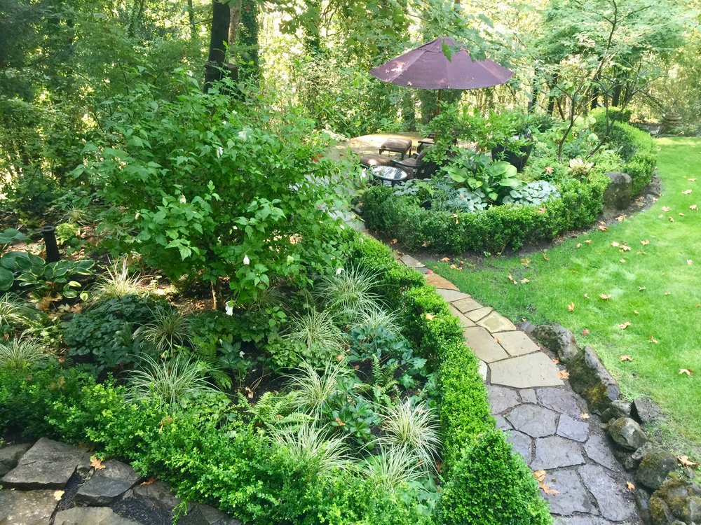 Backyard Wildlife Oasis - Transition to a thriving garden in a challenging location.