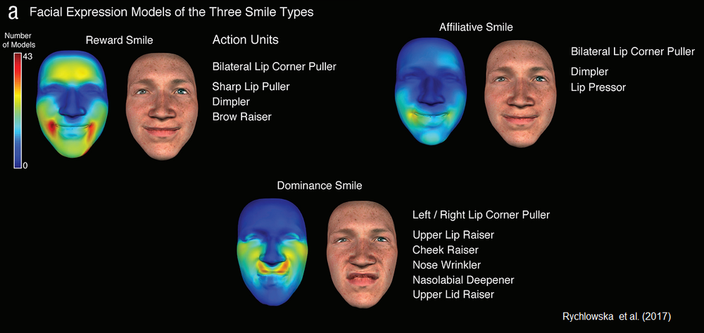 The facial action units that emerged as indicative of reward, affiliation, and dominance, based on perceiver ratings.