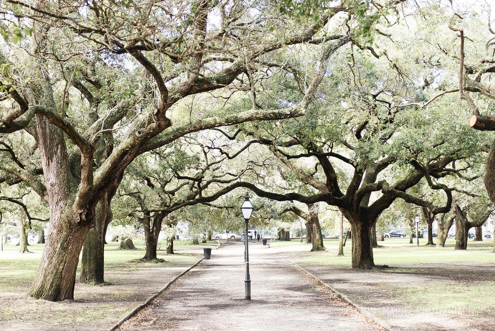 Charleston_10.jpg