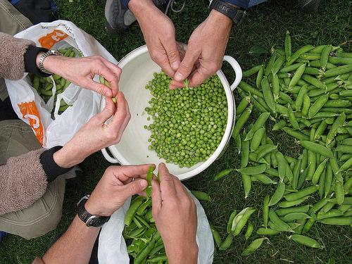 hands-beans.jpg