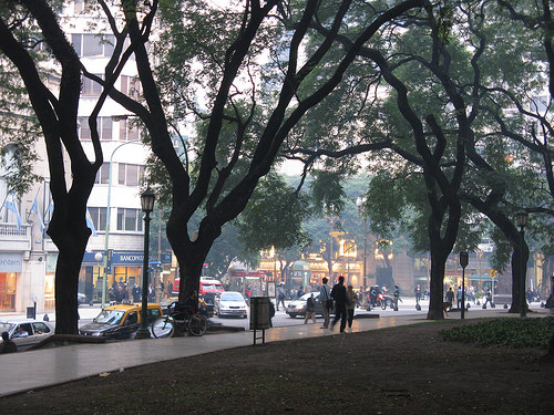 park-fog-medm