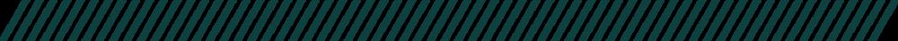 CVWB_webassets_Green dash@3x.png