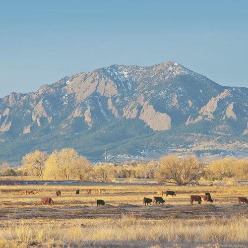 Convoi_Colorado.jpg