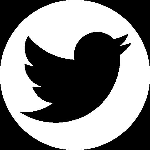 twitter-social-logotype.png