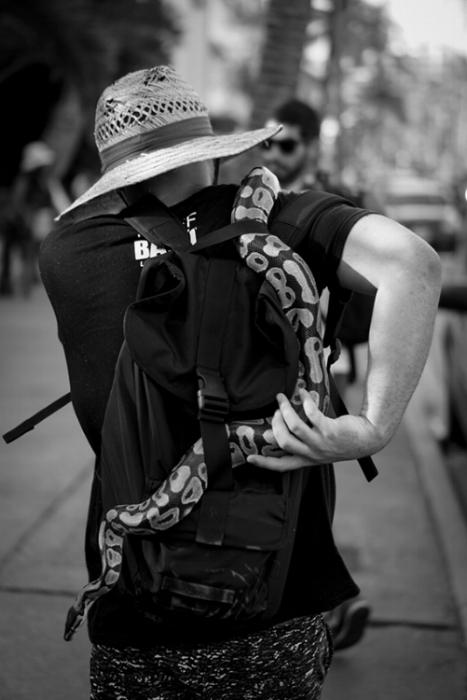 Snake man.jpg