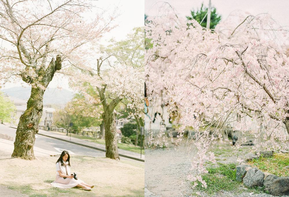 Japan (8).jpg
