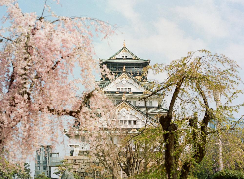 Japan (13).JPG
