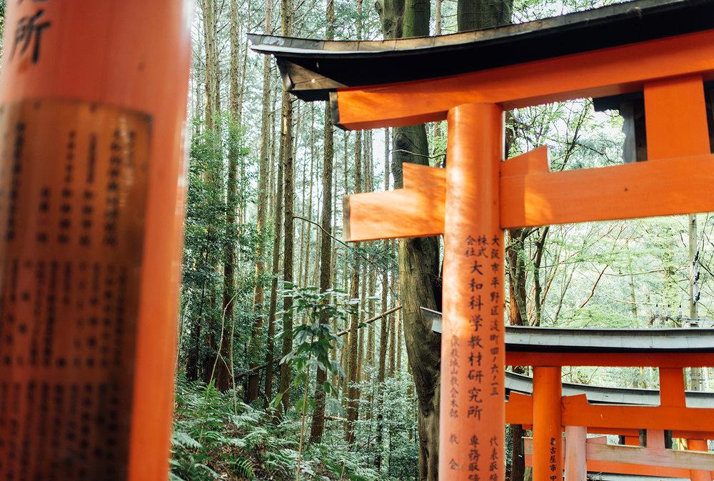 Japan (30).JPG