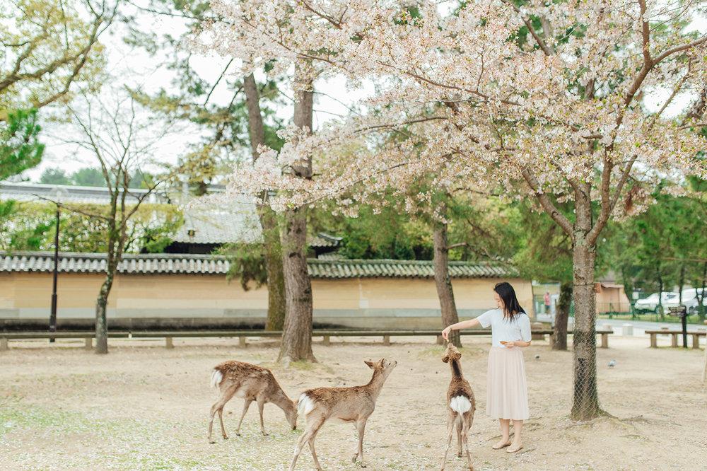 Japan (35).JPG