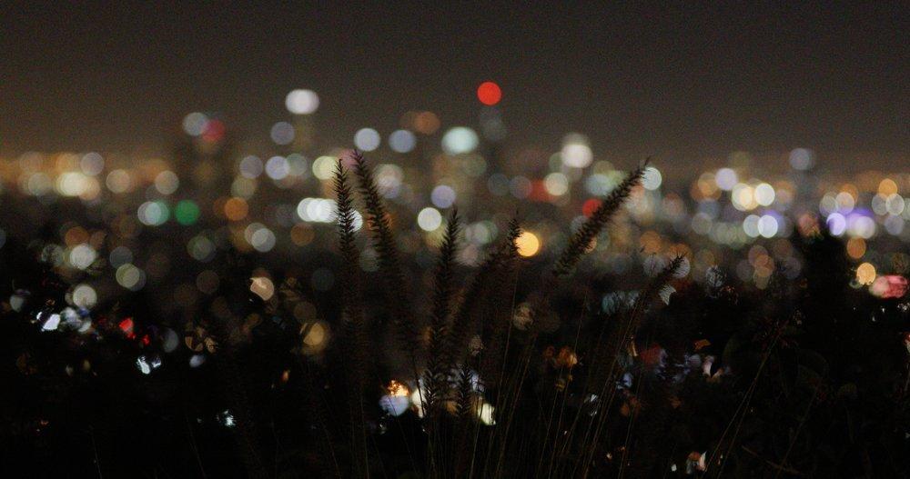 Light_019.jpg