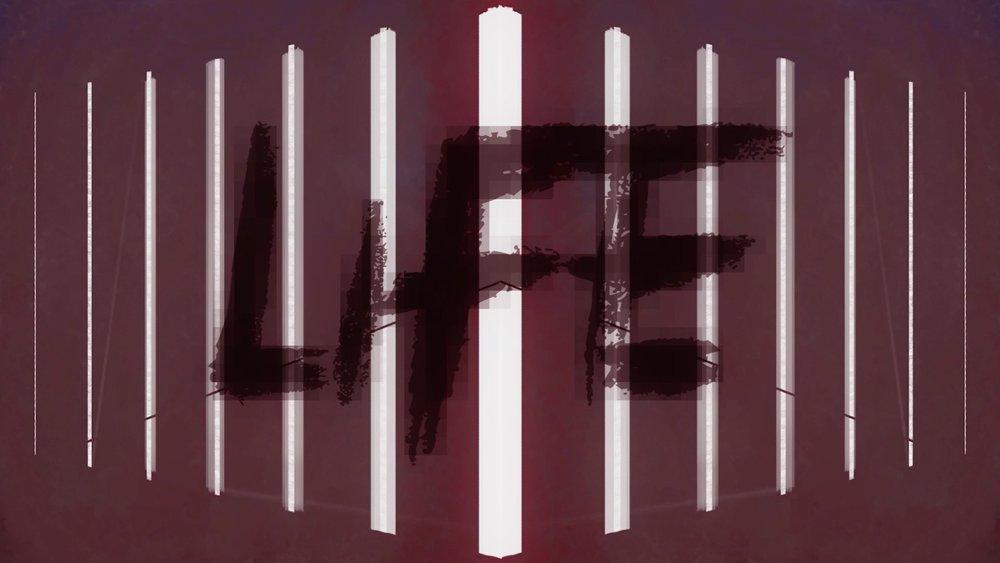 2 - life (small).jpg