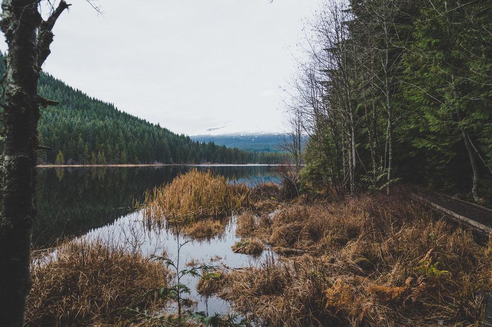 20161126-16.11.26_Oregon_Mt hood_Trillium Lake_5D4_BK3-169.jpeg