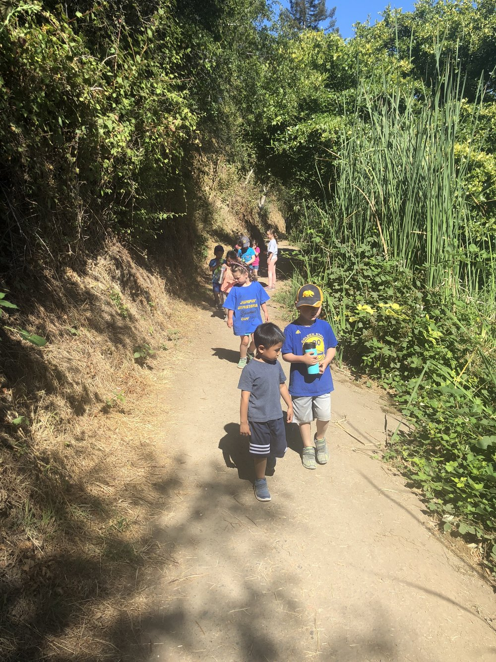 Trails and Outdoor Adventures - Explore the beautiful trails at Lake Temescal Regional Park. We will hike and explore the various trails and discover living creatures that call Lake Temescal home.