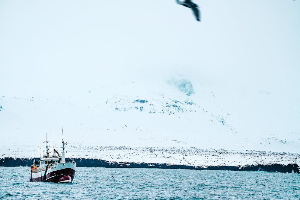 66north-iceland-16.jpg