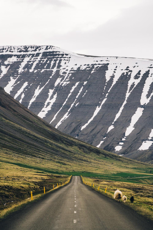 visitwestfjords-4.jpg