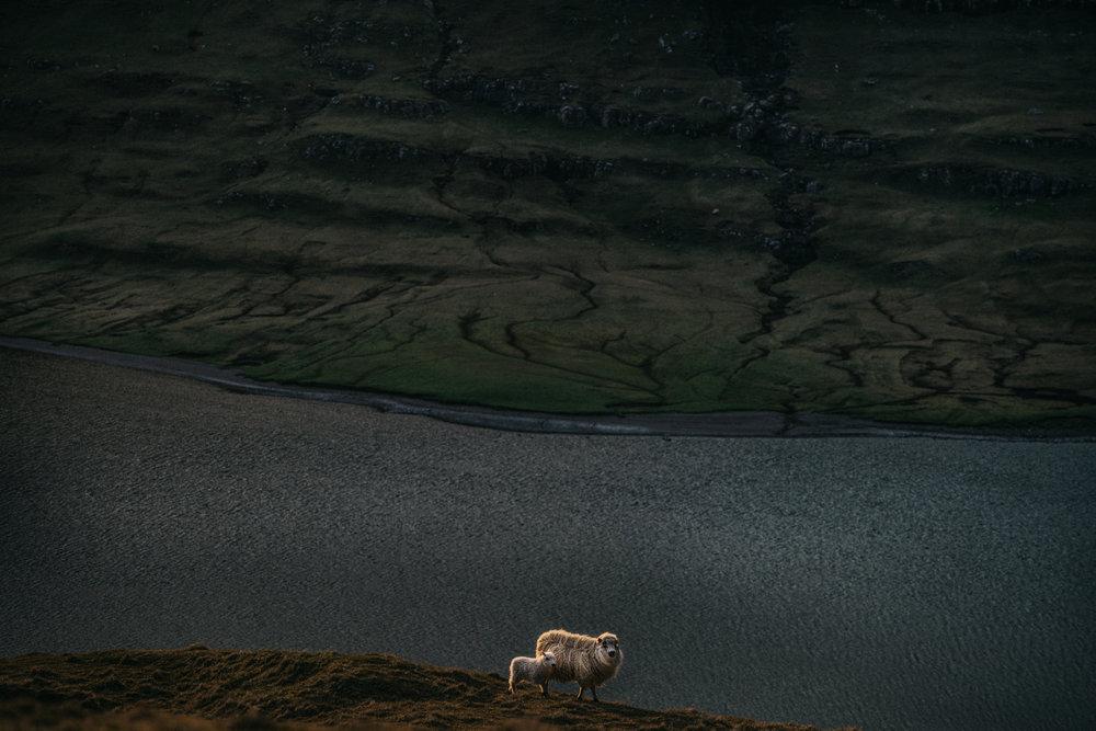 visitfaroeislands-7.jpg