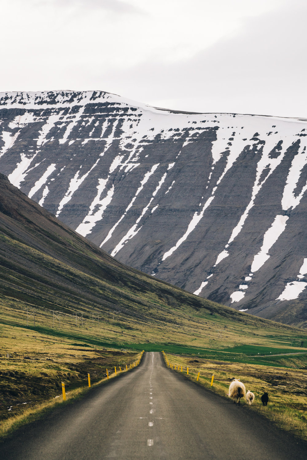 Westfjords Travel Guide Iceland