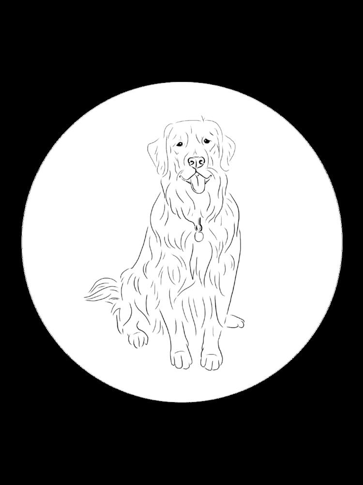 Aspen Profile