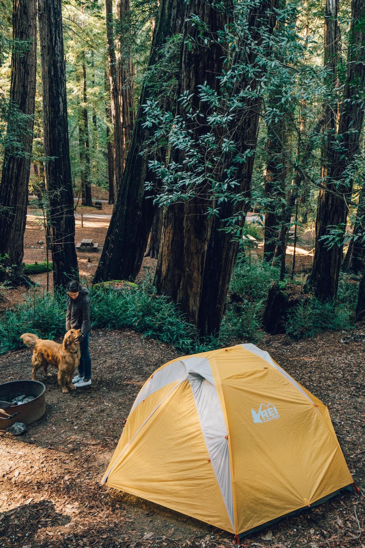 ventana-campground.jpg