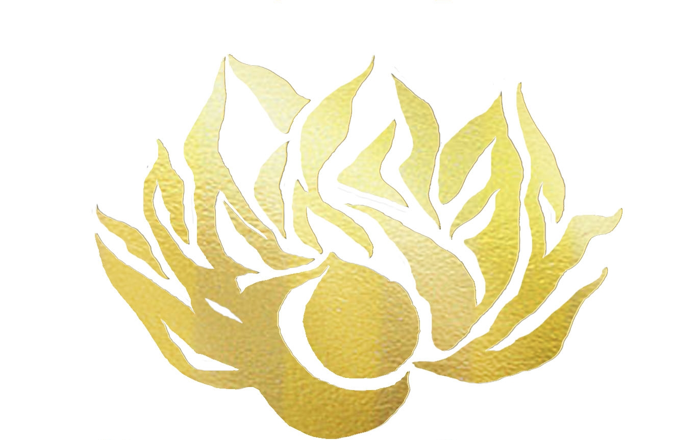 Golden Lotus Doula Services