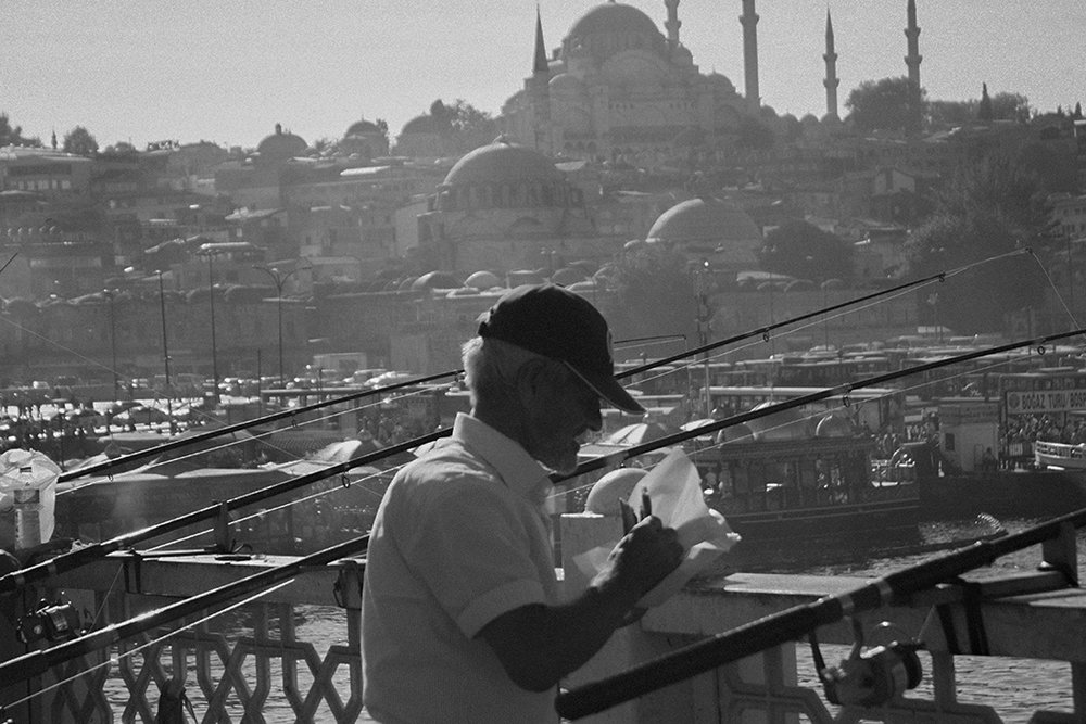 turkey_2.jpg