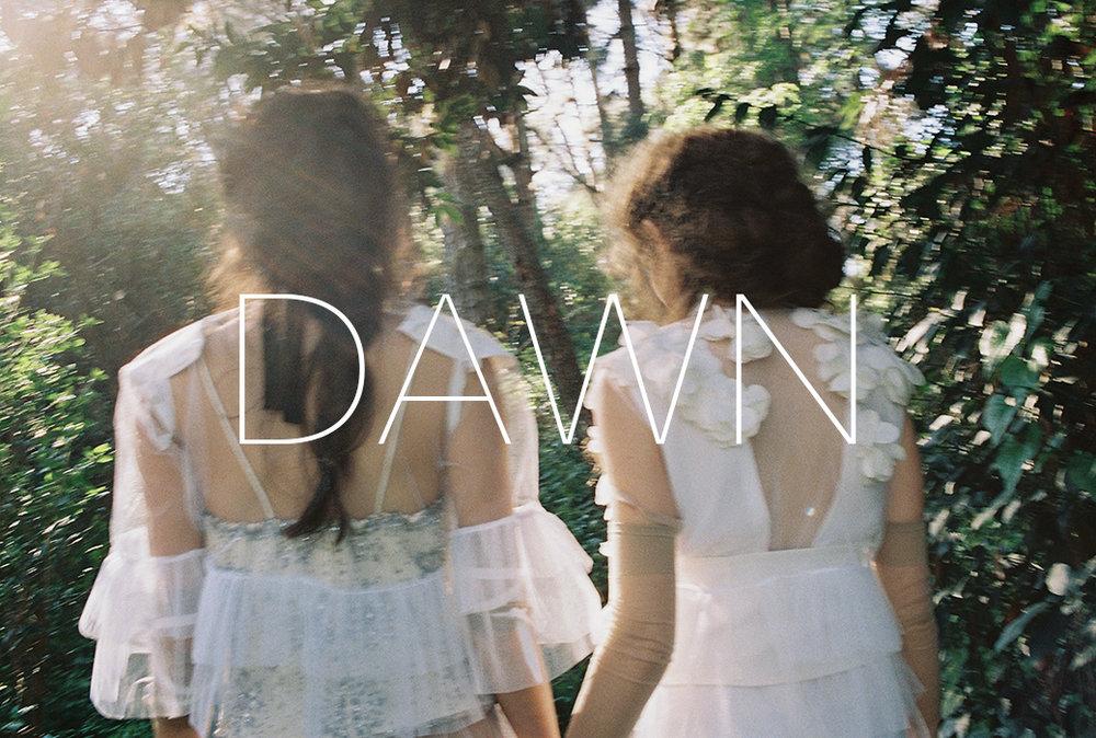 dawn16.jpg