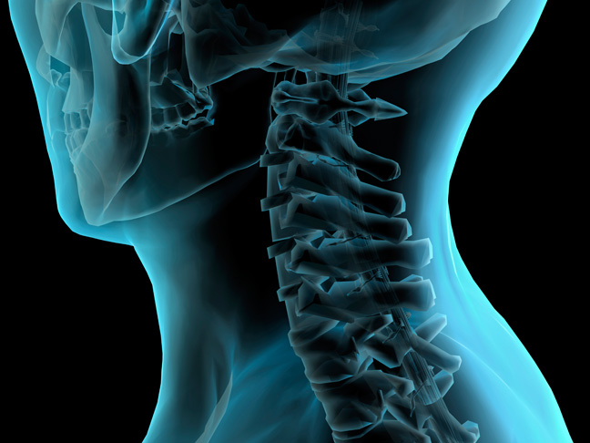 Cev-Spine-Blue.jpg