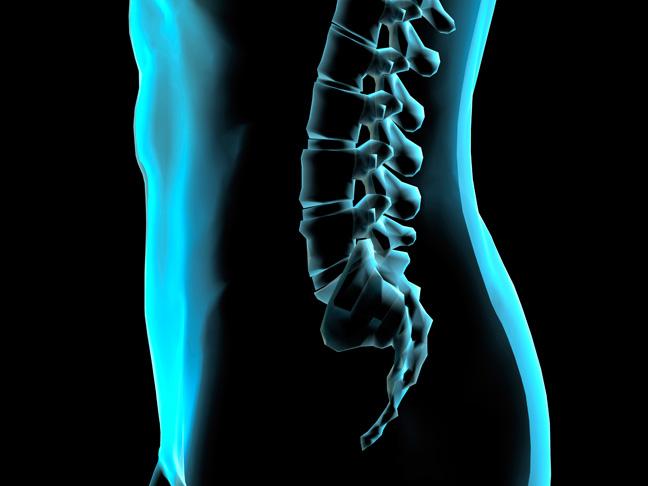 Lumb-Blue-NoRed.jpg