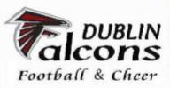 Pic- Experience - Tri Valley Falcons - DUBLIN Falcons - Logo.jpg