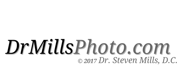 DrMills.com-WebSite-Text-DrMillsPhoto-WITH-DR-MILLS-TXT-7-25-17.png