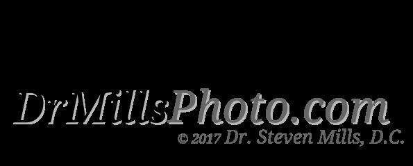 DrMills.com-WebSite-Text-DrMillsPhoto-WITH-DR-MILLS-TXT-7-25-17.png
