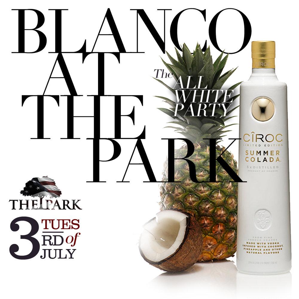 Blanco Web Banner v1.jpg