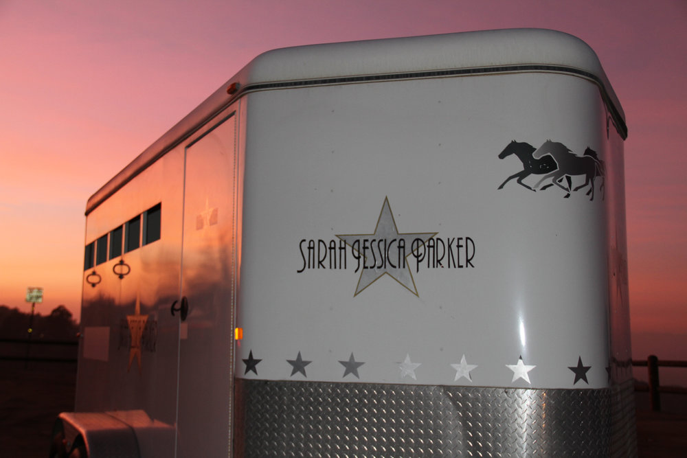 Sarah Jessica Parker Movie Star Horse Trailer