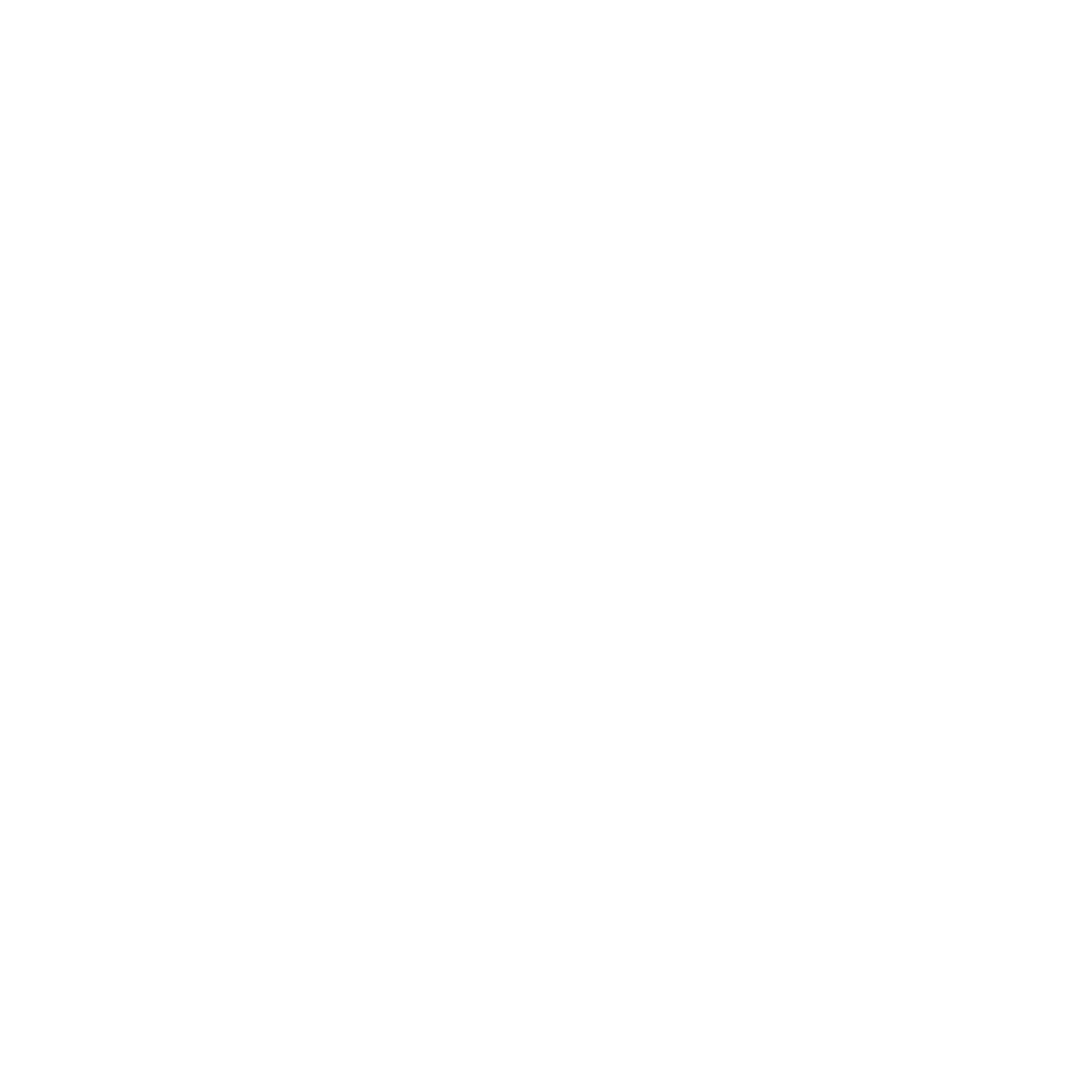 Career Aviators