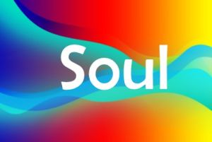 - The Soul is the spark of life that animates our being here on Earth in this incarnation. It is the divinity within us.Read more (click here) to gain a practical understanding of what influences how our Soul helps us, how to heal any damage and how we can use our divinity to find conscious health and happiness.