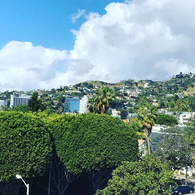 Taking in the views on this gorgeous day...🙌🏻 #empirepropertygroup #empireatnorton #empireatburtonway #empireatbw #empireatkings #empireatbellagio #westhollywoodapartments #westhollywood #weho #weholiving #beverlyhills  #lovebeverlyhills #beverlyhillsliving #beverlyhillsapartments #belairapartments #luxuryapartments #nyinla #realestate #developer #losangelesapartments #architecture #apartmentdesign #luxurydevelopment #residentialdesign