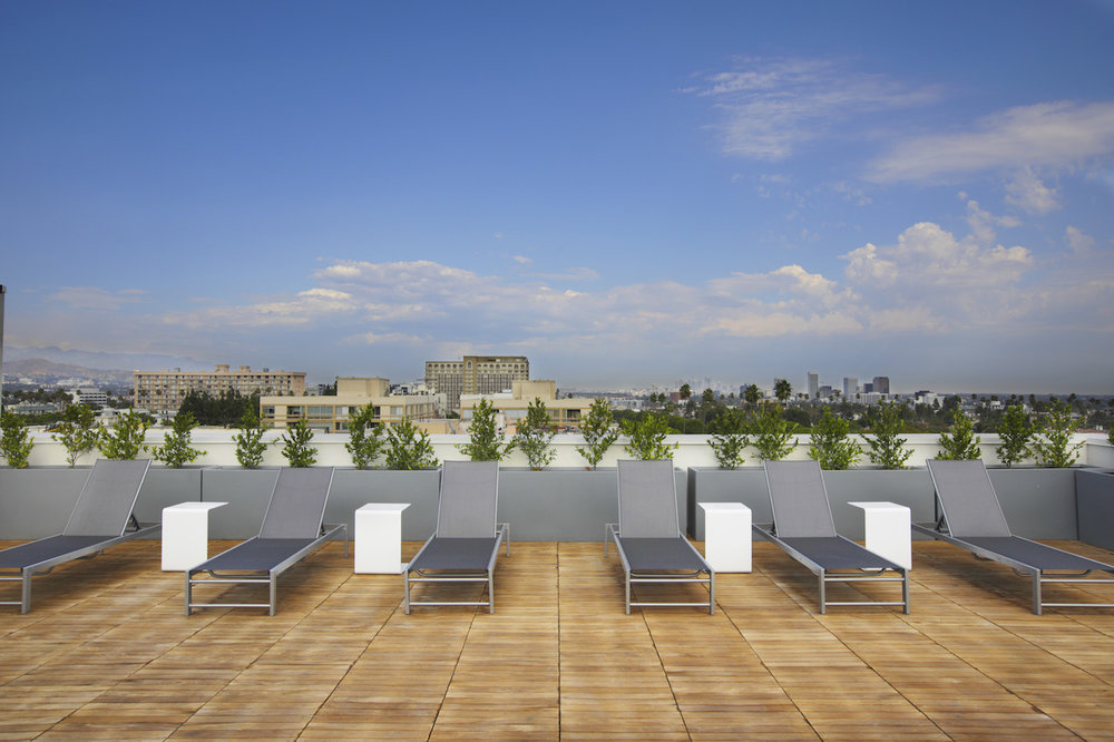 Rooftop Sun Lounge Daytime.jpg