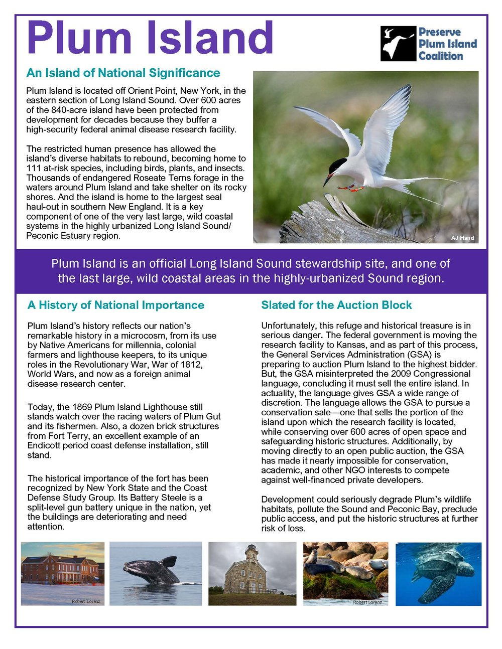 2018-11-06 Plum Island factsheet for Envision_Page_1.jpg