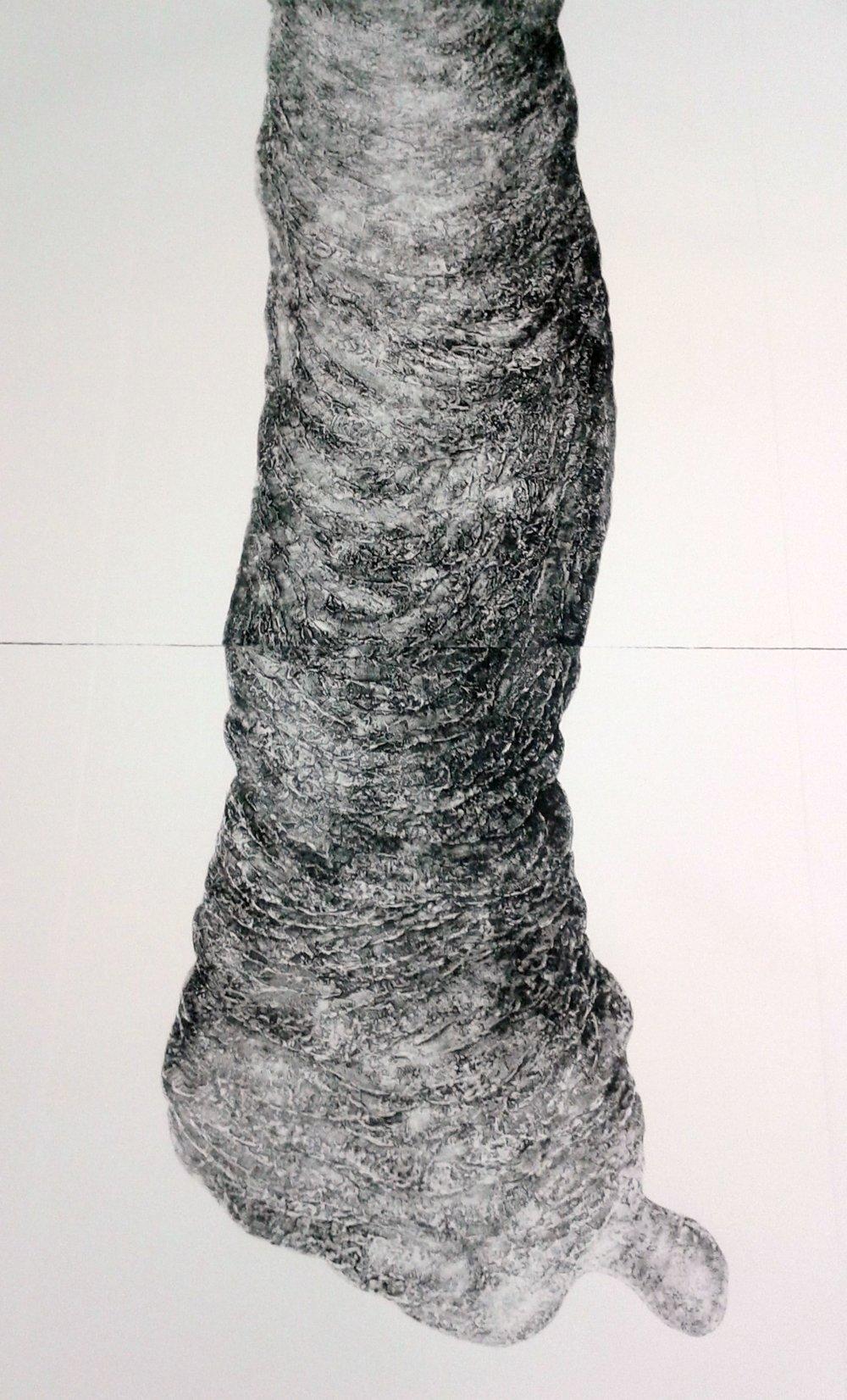 'Mater' Collagraph print. Detail. 60x118cms. 2017.