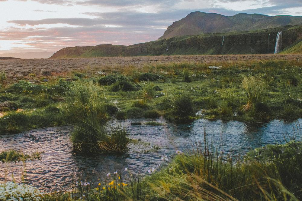 BexarGoods_Iceland_3843.jpg