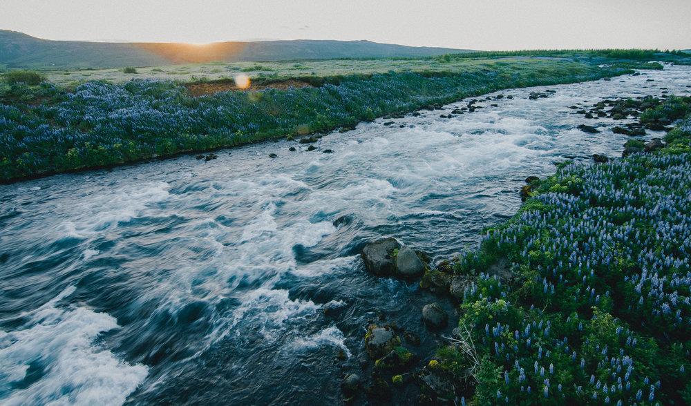 BexarGoods_Iceland_3592.jpg