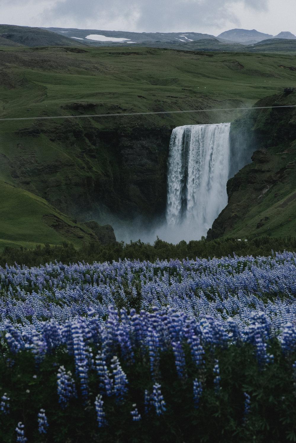BexarGoods_Iceland_5494.jpg