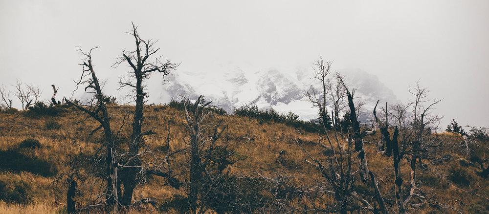 patagonia_03.jpg